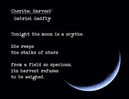 Gabriel Gadfly -Cherita Harvest.jpg