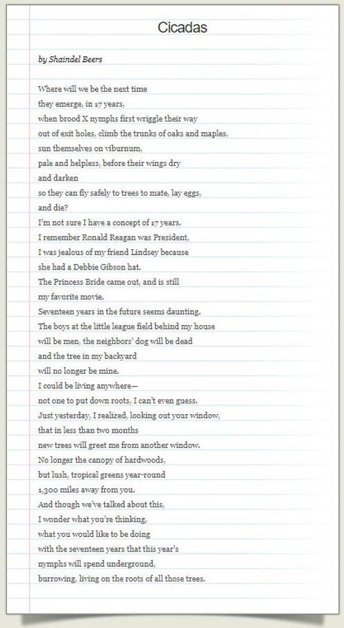 Shaindel Beers -Cicadas 2.jpg