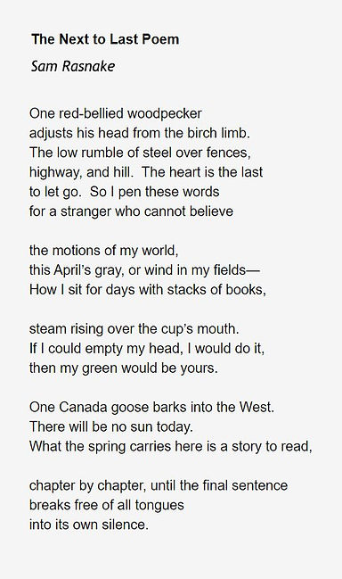 SamRasnake -The Next to Last Poem.jpg