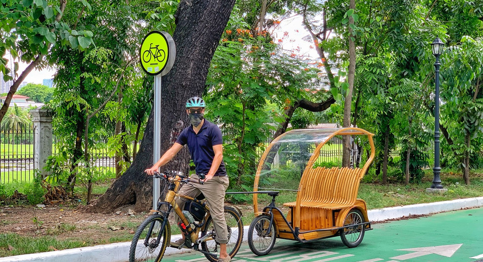Electric Luntian Bambike with Chariot