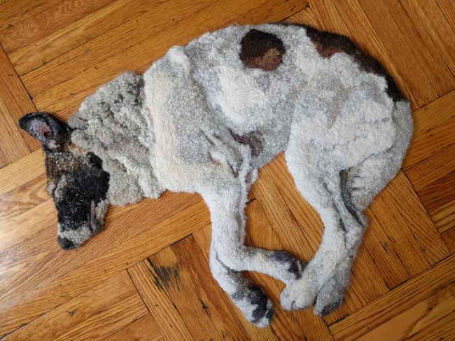 Injured elbow dog rug