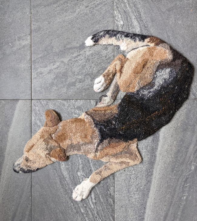Brown and black dog rug