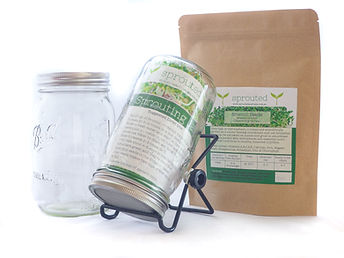 Organic Broccoli Seed Sprouting Kit Jar Australia