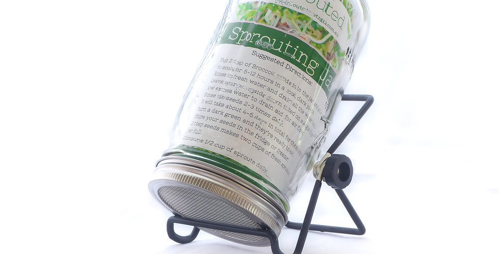 Sprouting Jar Includes Draining Lid and Rack