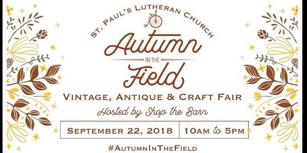 Autumn in the Field - Lockport