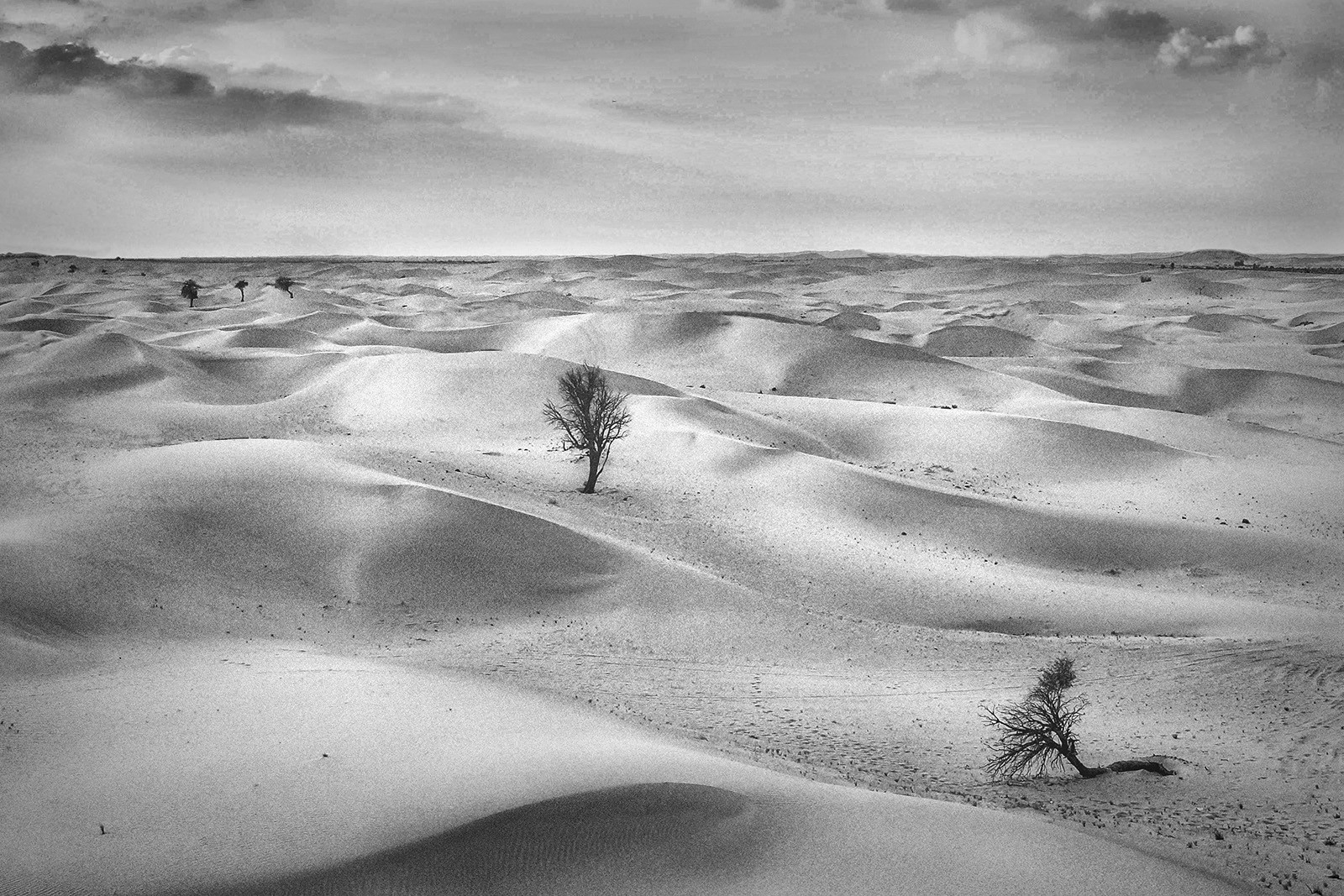 MONO - Waves of Sand by Mary Hill (10 marks)
