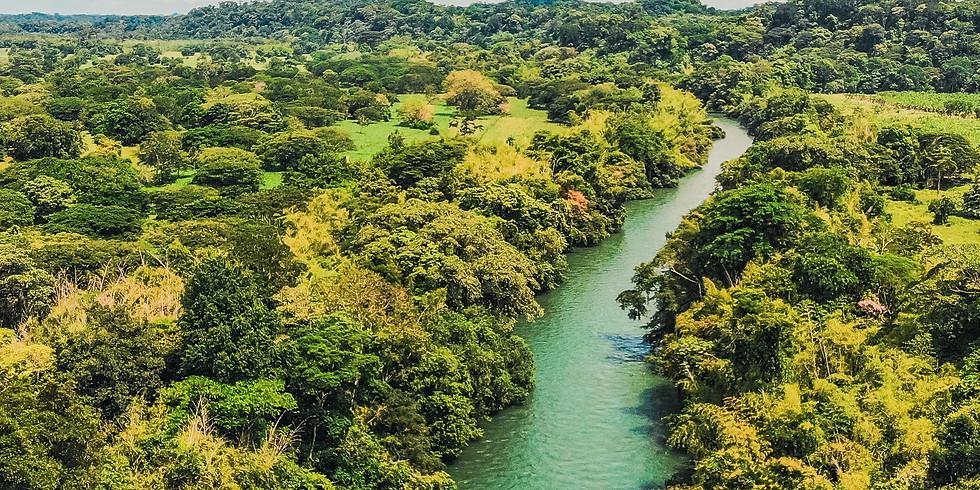 Norcasia: Rio La Miel y Amani