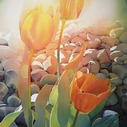 Grandma's Tulips