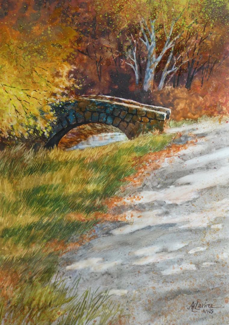 Autumn in Fisher Park