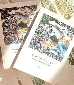 2bøger.jpg