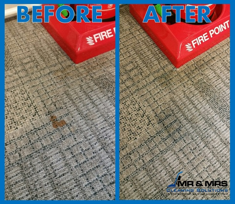 Carpet Cleaning Cardiff stain removal - Cardiff Cleaning Service.png