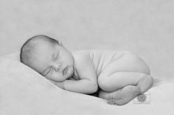newborn fotografie by Lindsey