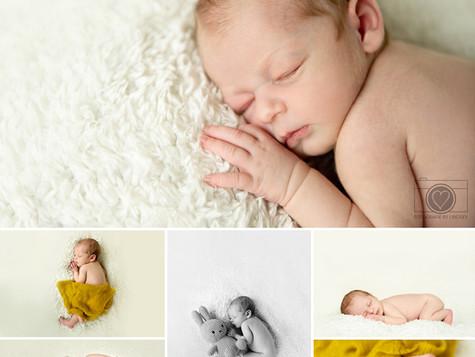 Newborn shoot Bergen op Zoom
