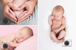newborn fotoshoot by Lindsey
