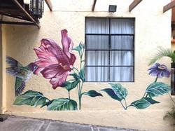 Tribute to Abu (Mural, Cuernavaca, 2021)