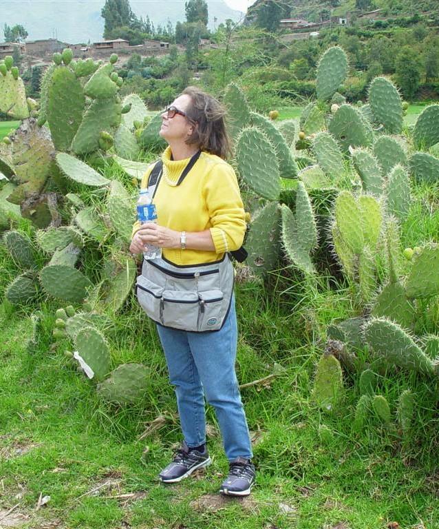 SACRED VALLEY, Peru, 2004 (73).JPG.jpg