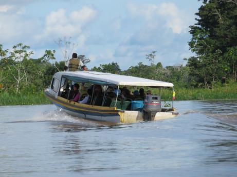 Amazonka między Peru a Brazylią
