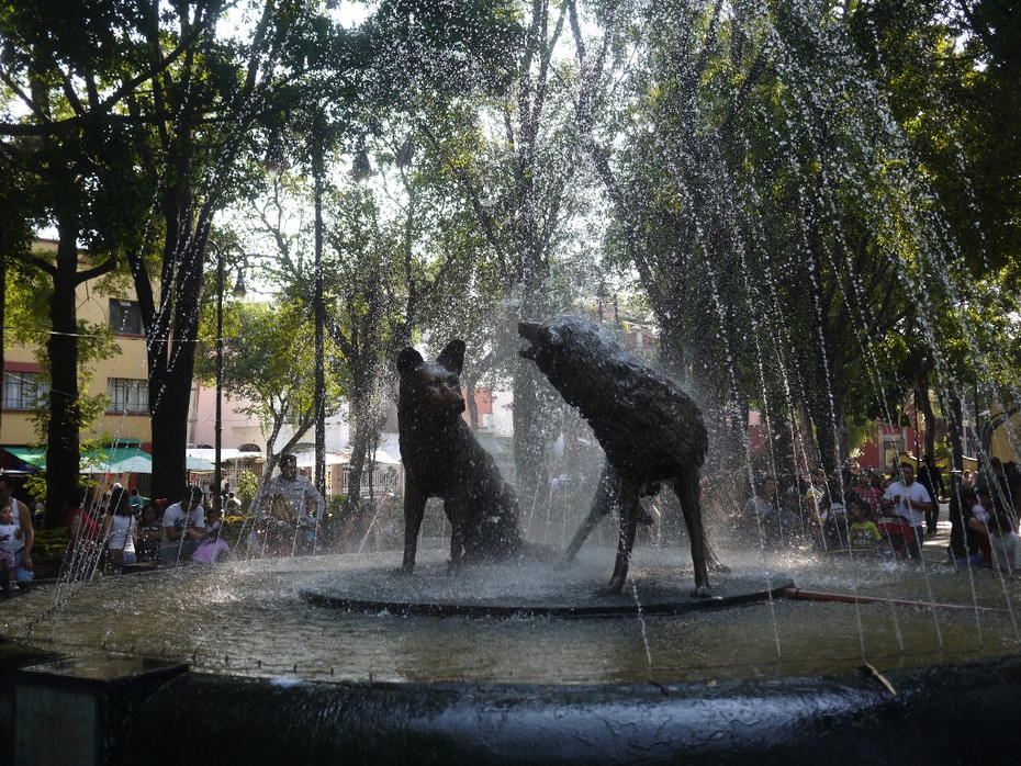 Mexico City, Coyoacan