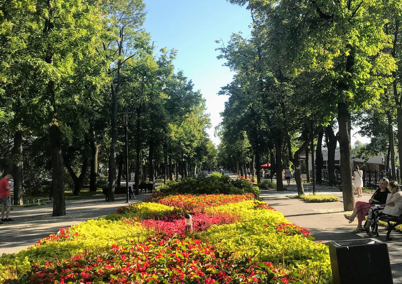 Ulica Mickiwicza