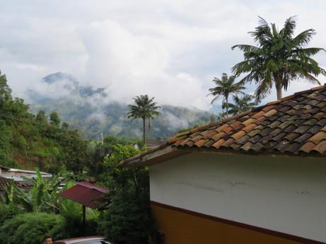Kolumbia, Dolina Cocora