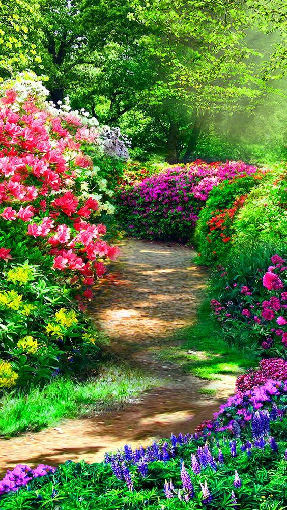 Como las flores 4