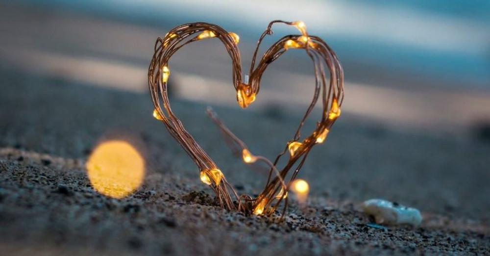 Amar amar y amar