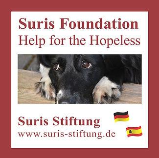 Logo_SurisStiftung_2019.jpg