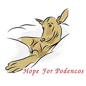 hope-for-podencos-circle-lge.png