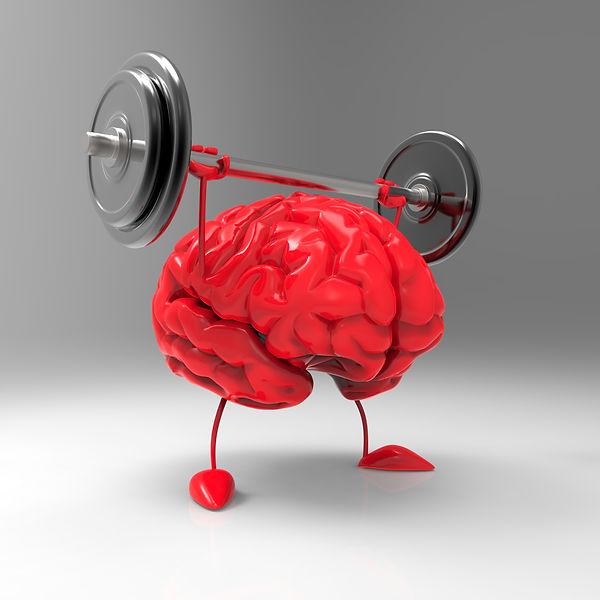 executive function coaching for brain