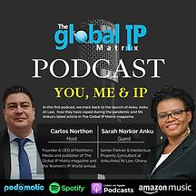 GIPM Podcast 1.png
