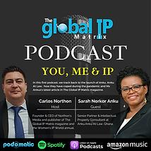 GIPM Podcast 1 (2).png