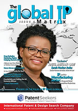 replace Global IP Matrix - Issue 6 - WEB