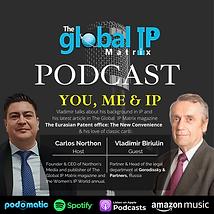 GIPM Podcast 2 Gorodissky (2).png
