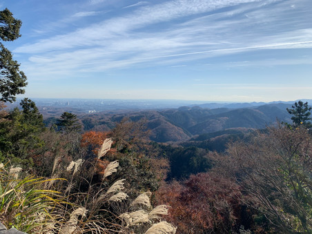 Mount Takao Hiking in Winter: The Best-loved Mountain in Tokyo