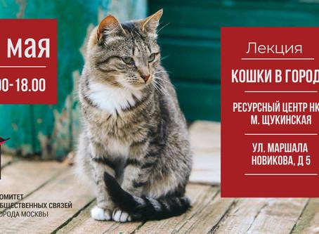 """Видеозапись лекции """"Кошки в городе"""""""