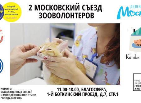 16 ноября. Школа зооволонтера в Благосфере (м. Динамо)