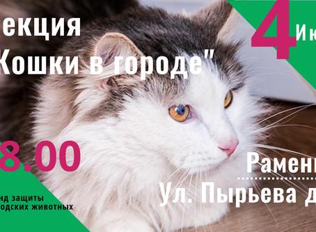 """Лекция """"Кошки в городе"""" в Раменках"""