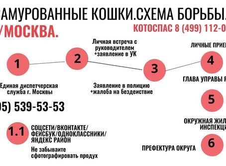 Инструкции по борьбе. Москва,МО
