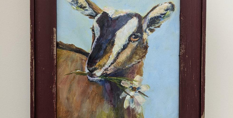 Kid Goat - Framed