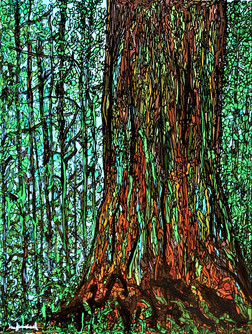 The forest 70x90