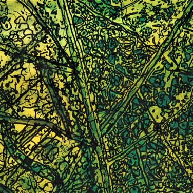Leaf views 65x50