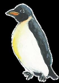 transparent-penguin_edited.png