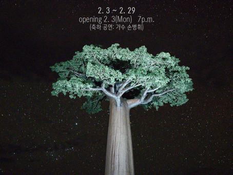 2월 초대전: 이흥렬의 '신들이 사랑한 나무, 바오밥'