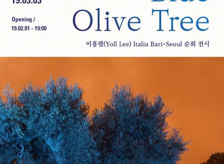 2월 초대전: 이흥렬의 '푸른 올리브나무' (2.1 ~3.3)