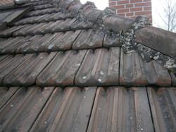 Renovace taškové střešní krytiny 2