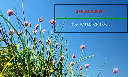 Spring Fever! How to Keep Focused Until School's Out...