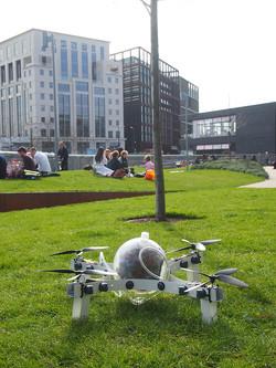 Drone grass