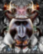 Art of Mohan The Evolution Of God
