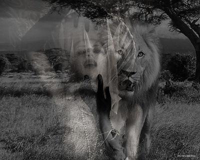 sendout Strange Animal - 20 x16 - 2020.j