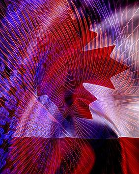 sendout Canada Flag 16 x 20 good.jpg